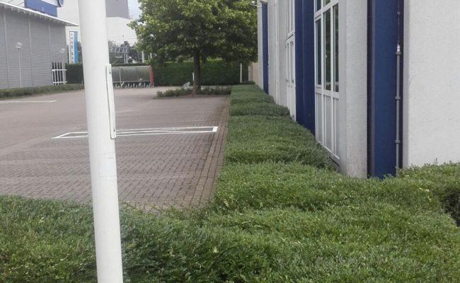 onderhoud-bedrijventerrein-amsterdam-noord-1